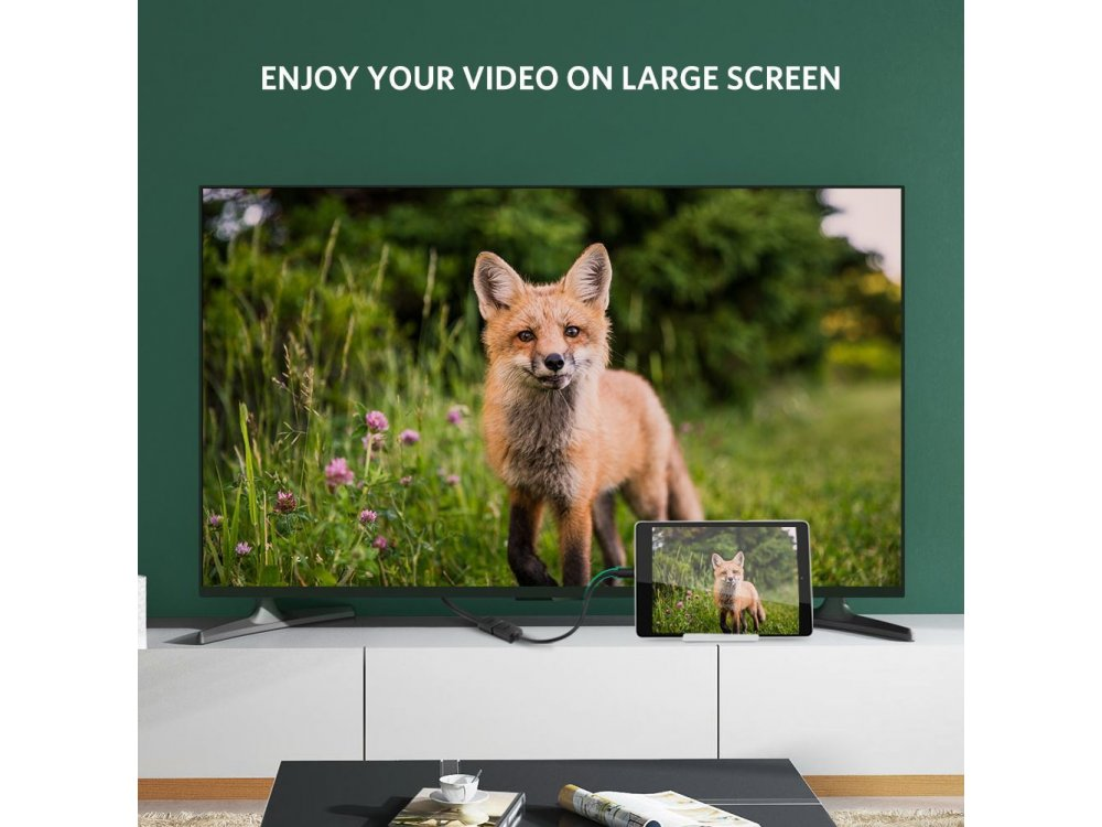 Ugreen Micro HDMI to HDMI 4K Bi-directional Adapter, black - 20134