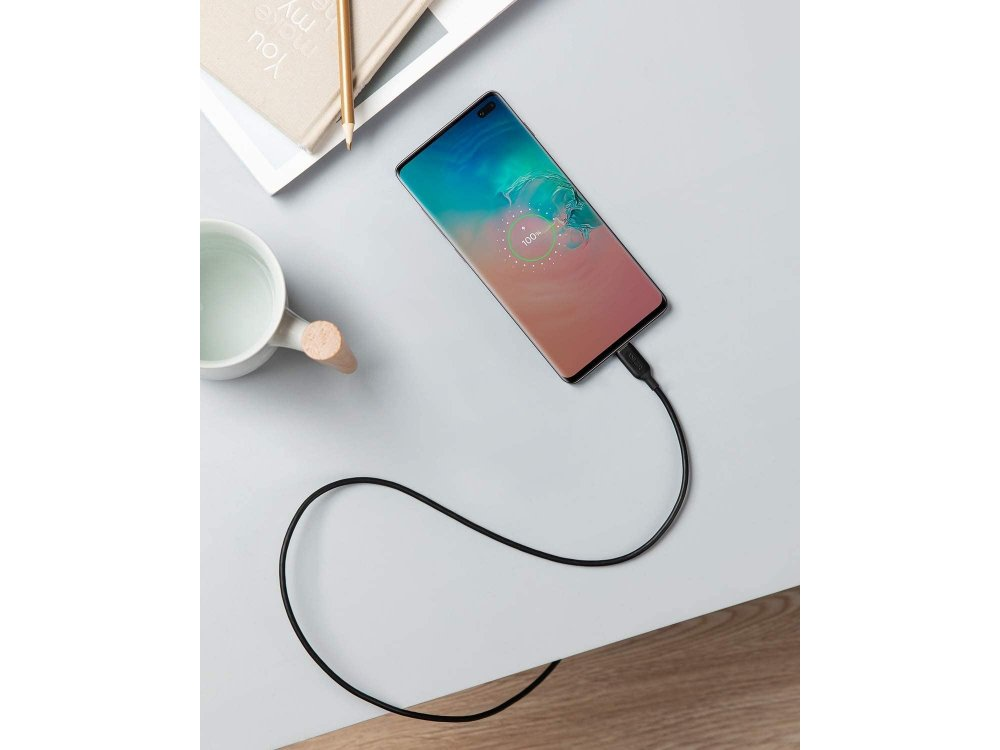 Anker PowerLine III Cable 3ft. USB-C to USB-C - A8852H11, Black