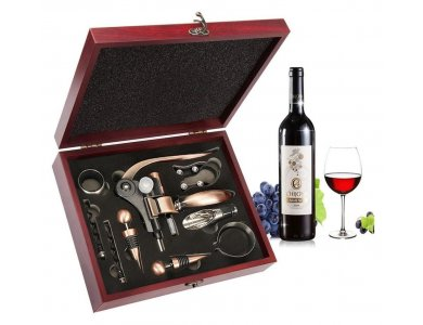 Corkscrew Wine Opener Set, Wine Accessories Set 10pcs with Suitcase, Pouch, Thermometer, Caps, Ring, Pourer & Foil Cutter